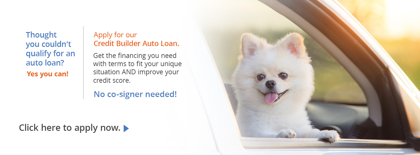 Credit Builder Auto Loan