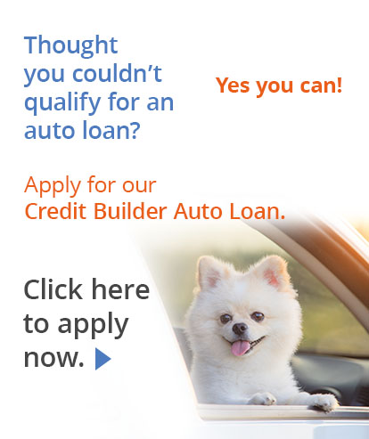 Apply for a Credit Builder Auto Loan